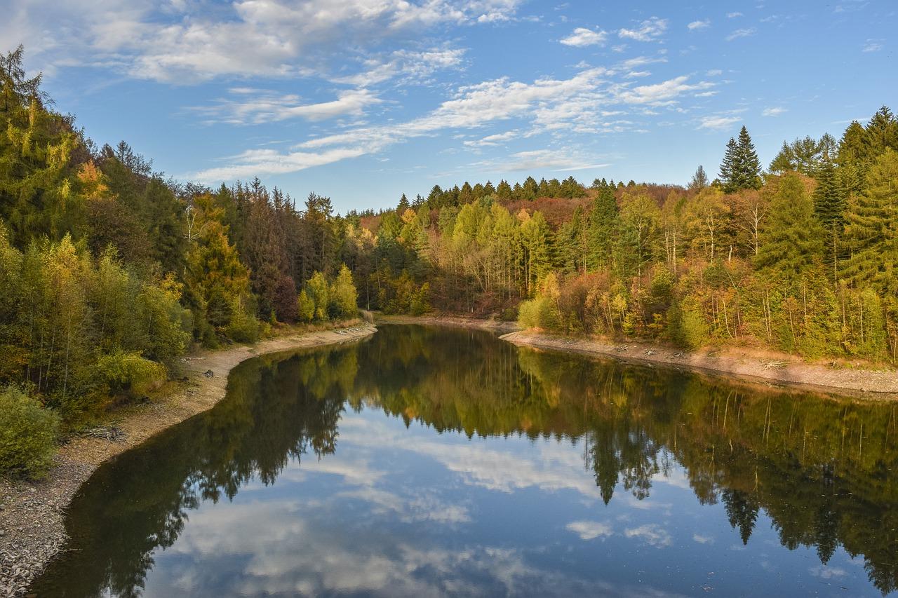 Lake Trees Bank Forest Woods  - MichaelGaida / Pixabay