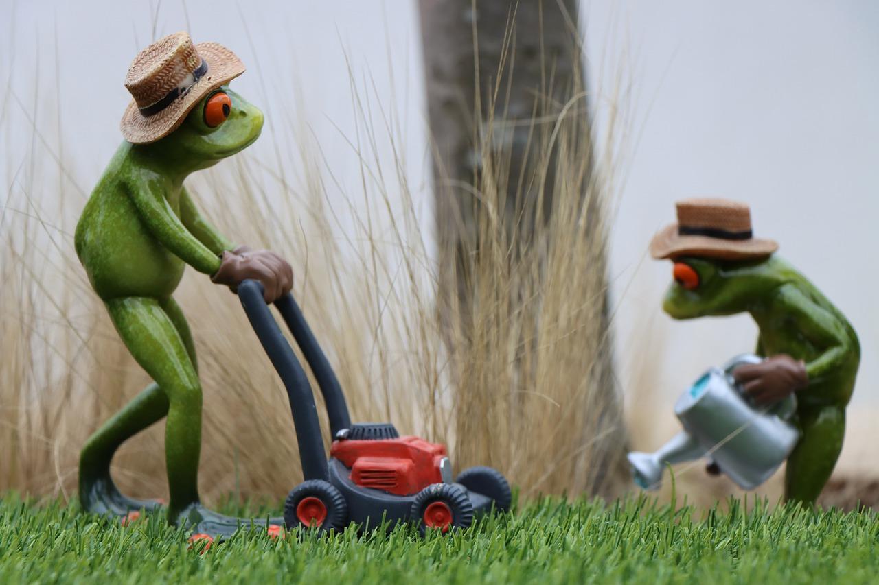 Statue Frog Gardening Garden  - Rollstein / Pixabay